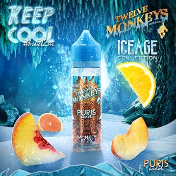 Twelve Monkeys - Puris Iced Liquid 50 ml